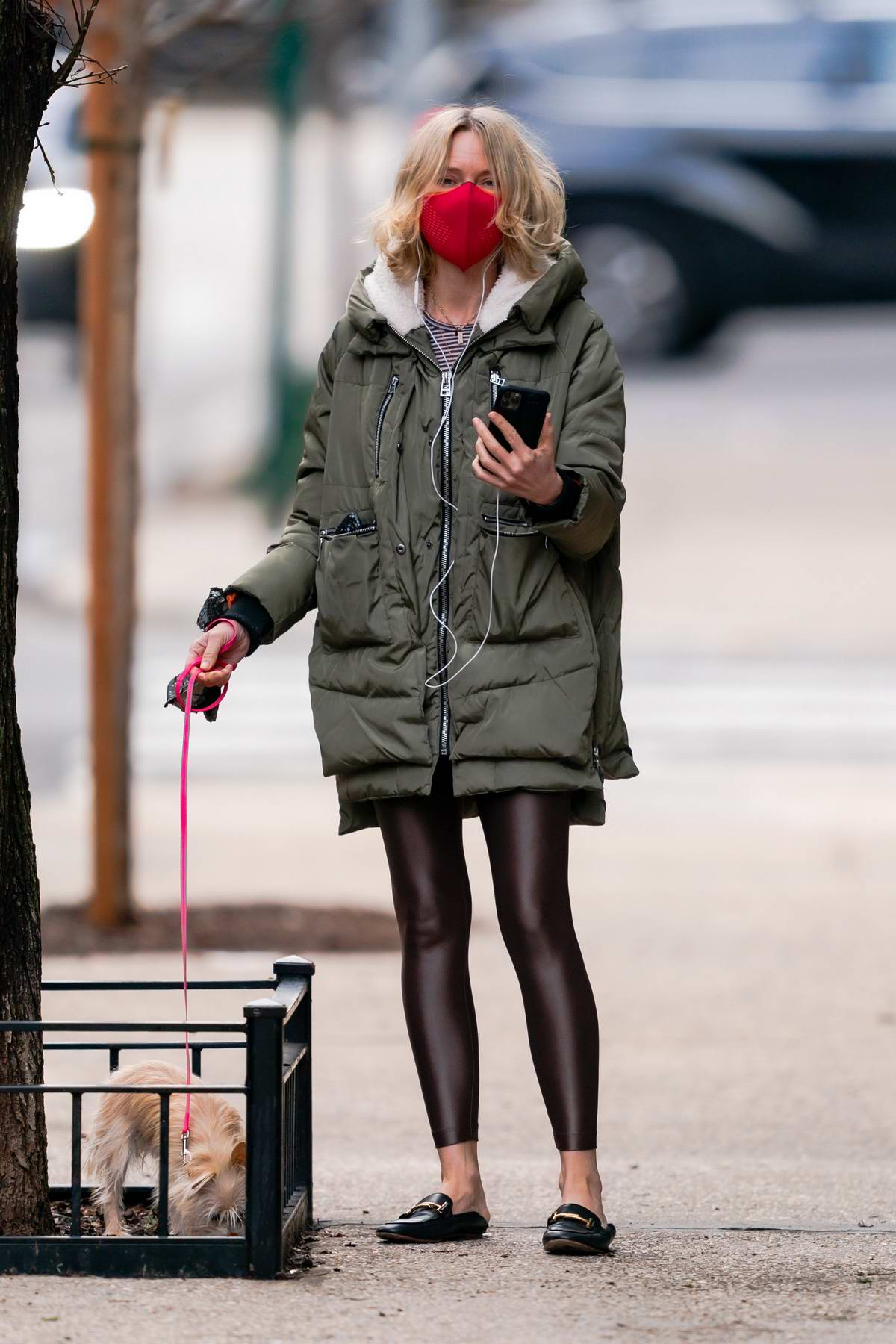 Naomi Watts spotted face-timing with Billy Crudup on a dog walk in New York City