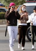Olivia Wilde and Harry Styles appear inseparable as they step out with friends in Santa Barbara, California