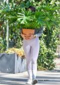 Eiza Gonzalez stops to buy a plant in Studio City, California