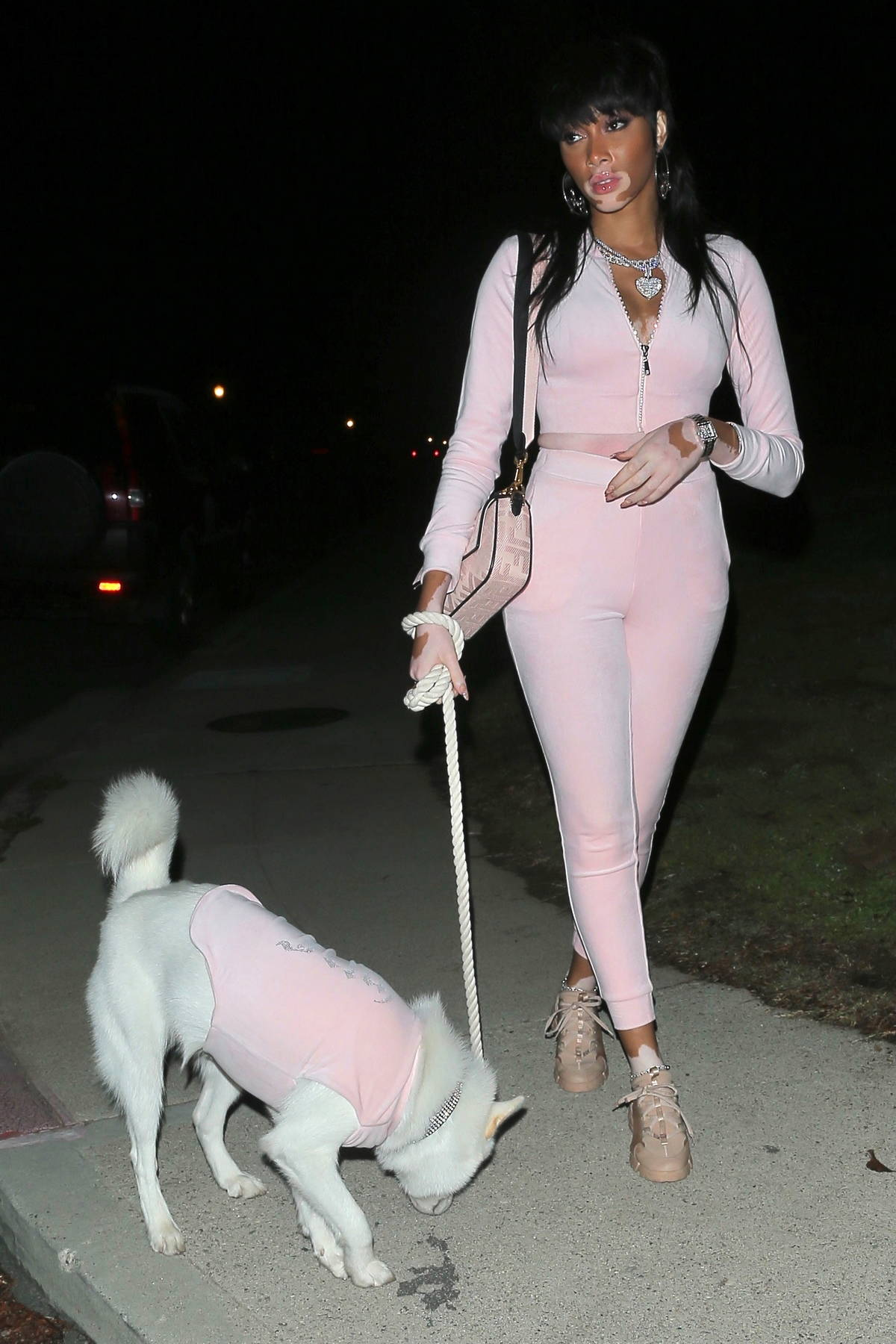 Winnie Harlow looks pretty in pink while out on a late night stroll with her dog in Los Angeles