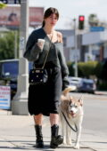 Camila Morrone looks stunning in a black dress with a grey sweater while out for coffee with her dog in West Hollywood, California