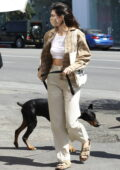 Kendall Jenner brings her dog along with her security during a lunch outing in West Hollywood, California