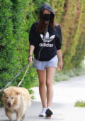 Aubrey Plaza sports an Adidas hoodie and shorts while out walking her dogs in Los Feliz, California
