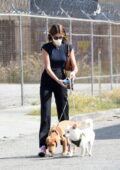 Kaia Gerber brings her two dogs to work for a photoshoot in Los Angeles