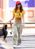 Emily Ratajkowski flashes her flat midriff in a cropped yellow tee while out for a stroll with her husband in New York City