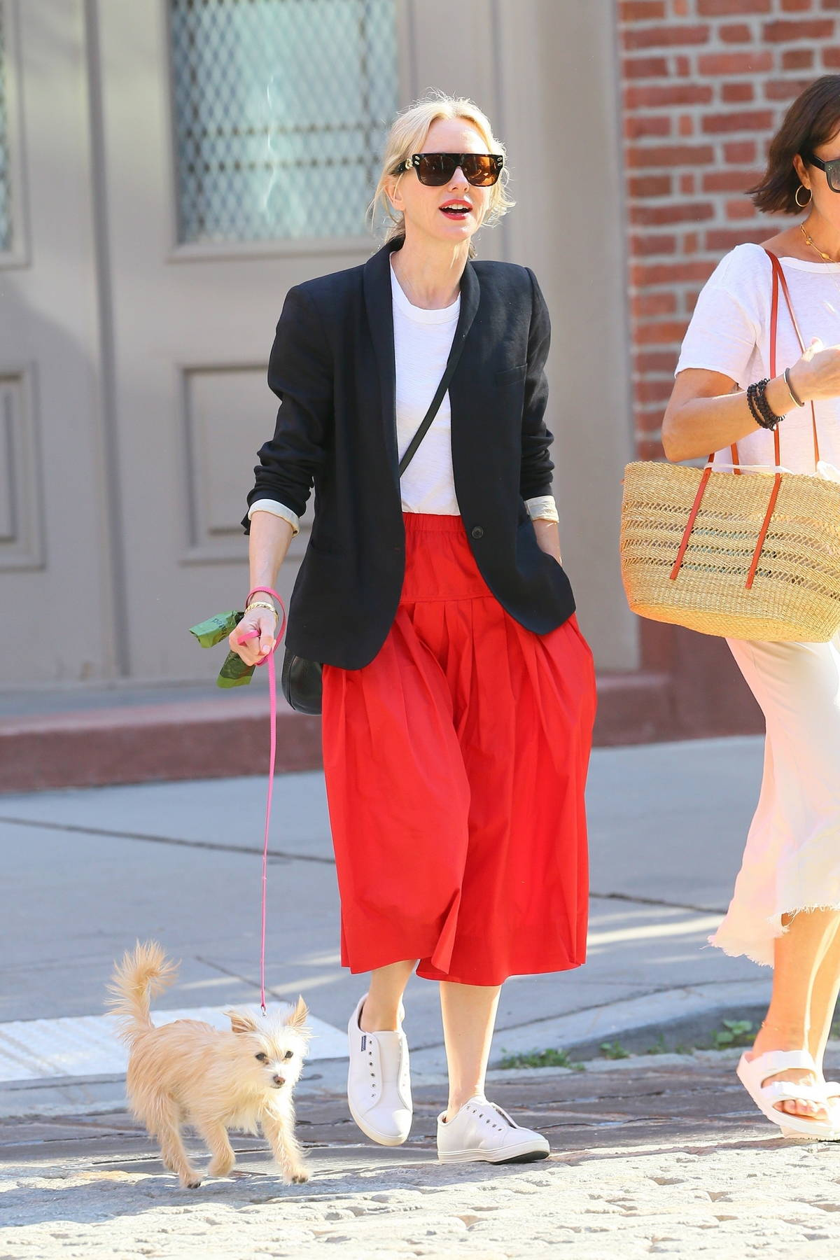 Naomi Watts looks fantastic in a red skirt as she walks her dog in New York City