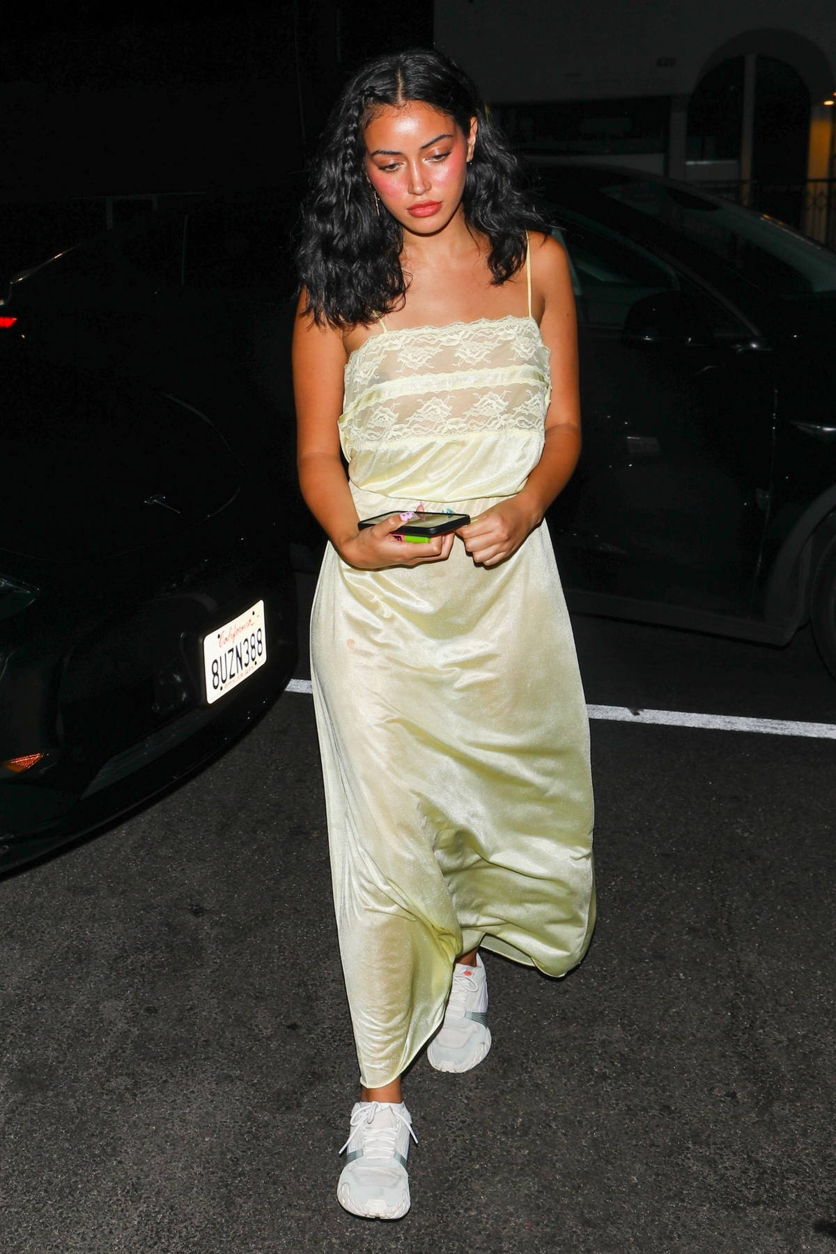 Cindy Kimberly dons a see-through dress as she arrives at a birthday party at The Nice Guy in West Hollywood, California