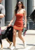 Emily Ratajkowski looks trendy in a burnt orange mini dress while out to buy pet food with her husband in New York City