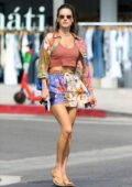 Alessandra Ambrosio looks stylish in a colorful ensemble as she steps out in Los Angeles