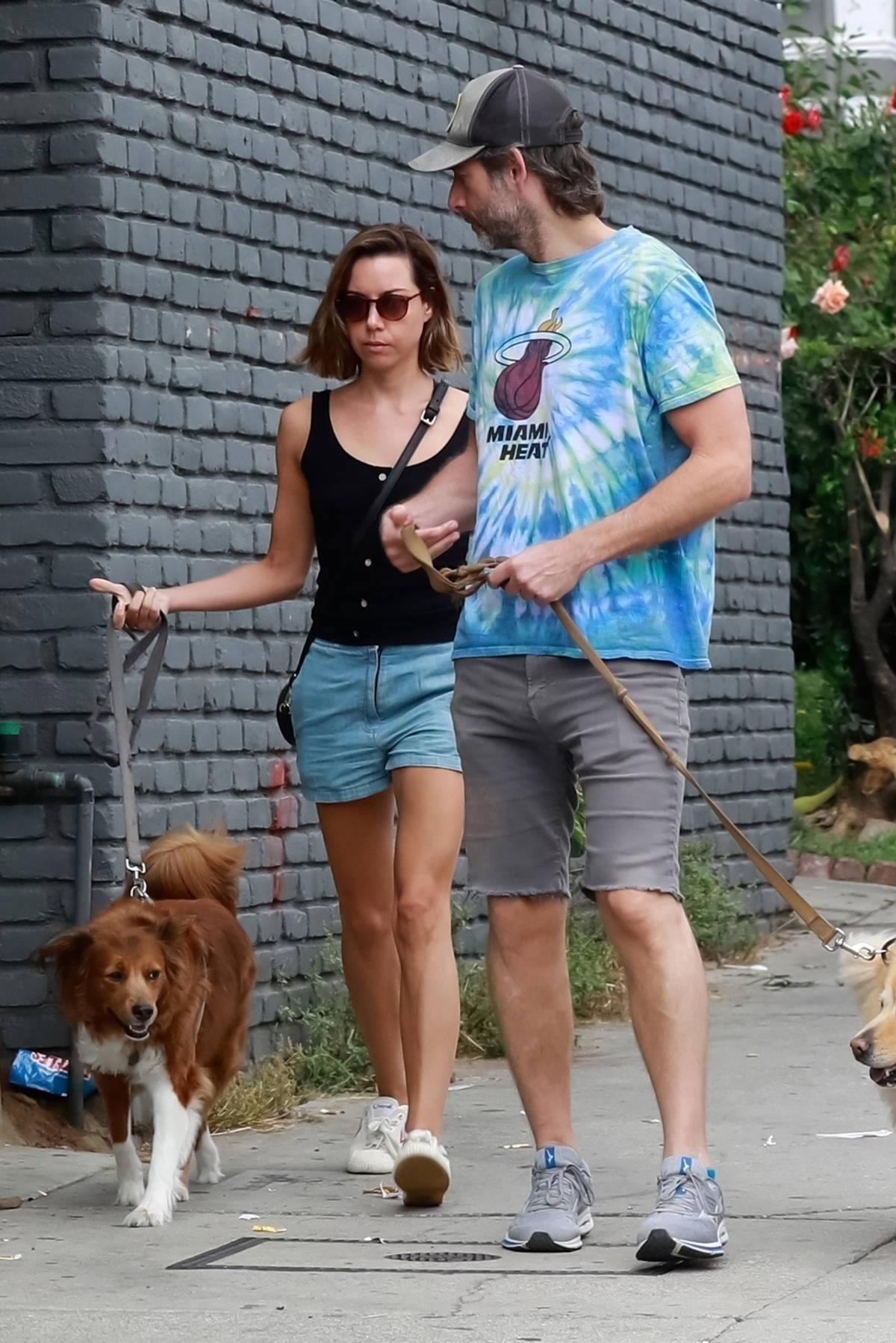 Aubrey Plaza wears a black top and denim shorts while out walking her dogs with husband Jeff Baena in Los Angeles