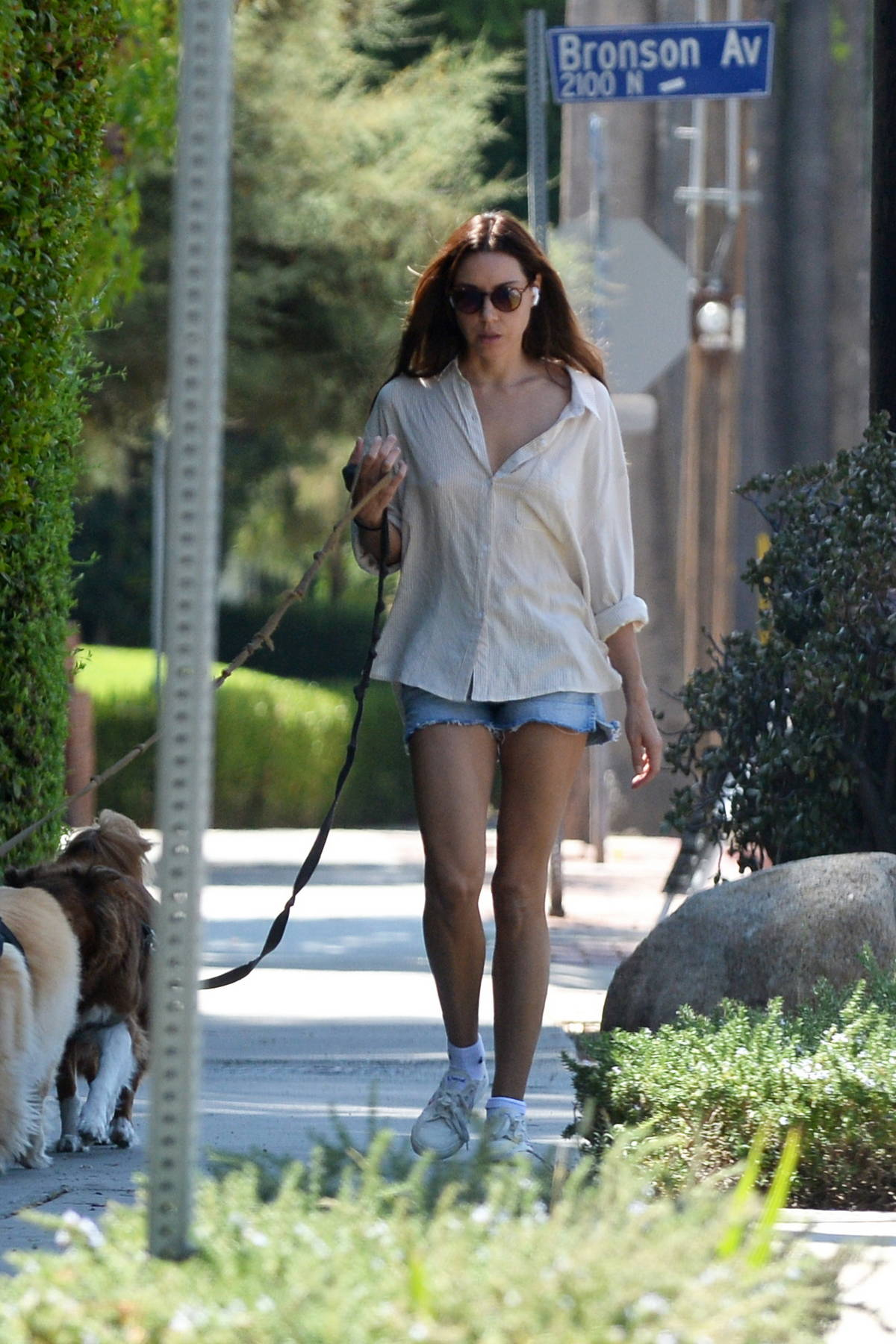 Aubrey Plaza wears a casual shirt and denim shorts while walking her dogs in Los Feliz, California
