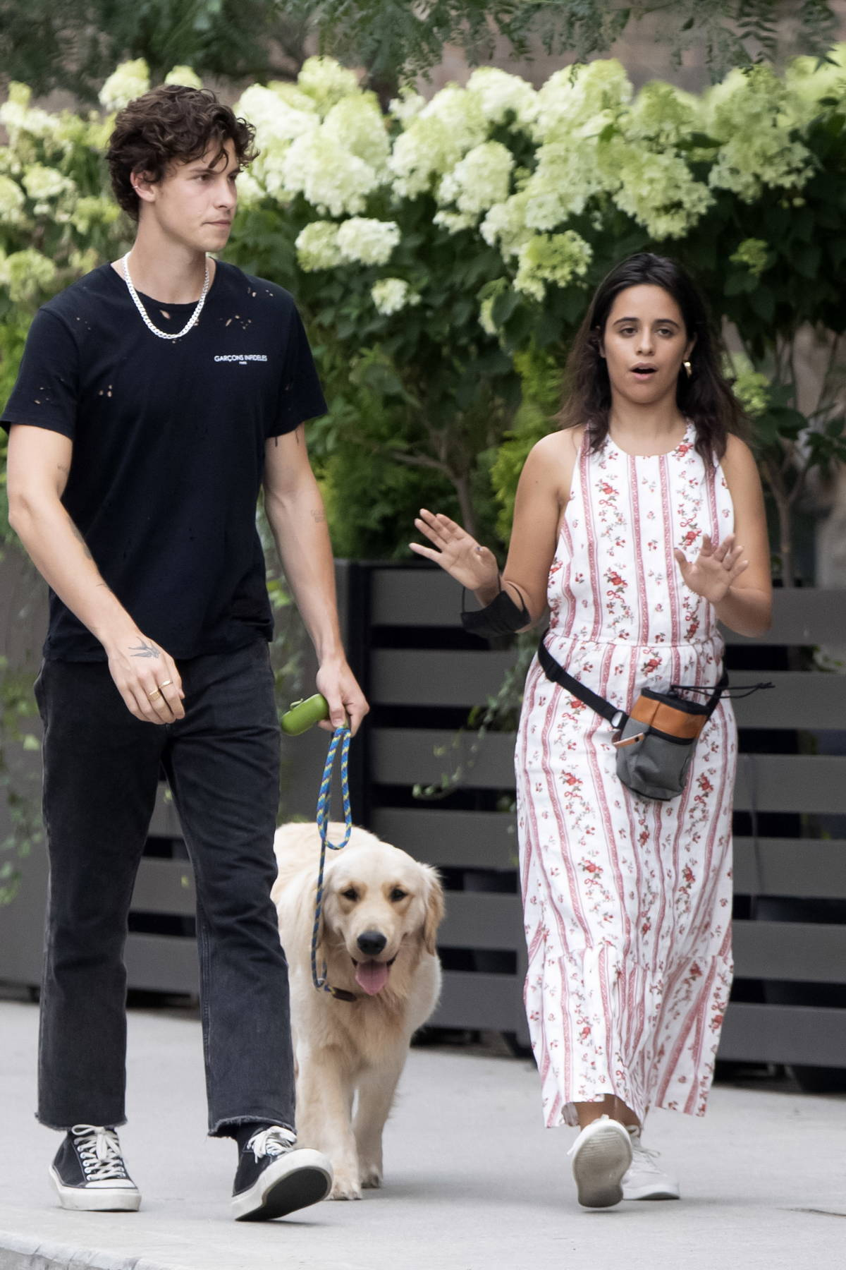 Camila Cabello and Shawn Mendes step out for a leisurely stroll with their dog in Shawn's hometown of Toronto, Canada