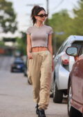 Emily Ratajkowski shows off her perfect abs in a crop top while out for a walk in Los Angeles