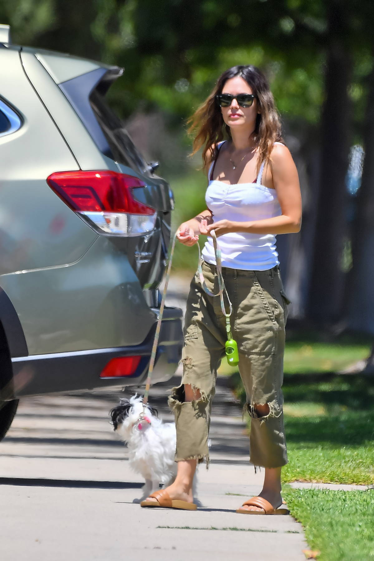 Rachel Bilson takes her new dog out on a walk in Studio City, California