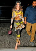 Kendall Jenner looks stunning in a figure-hugging sheer dress while out to dinner at Zero Bond in New York City